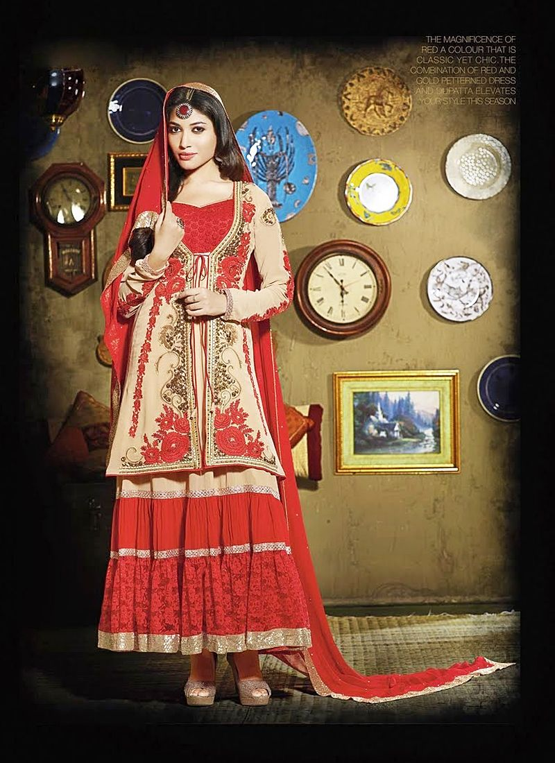 Cream Embroidery Work Net Anarkali Suit