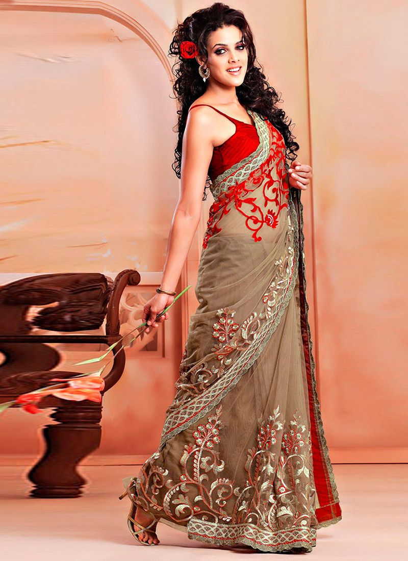 Dusty Beige Net Embroidered Saree