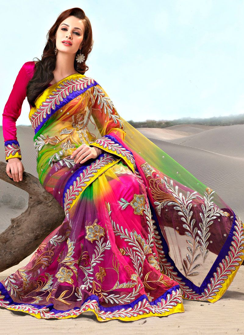 Multicolored Net Embroidered Saree