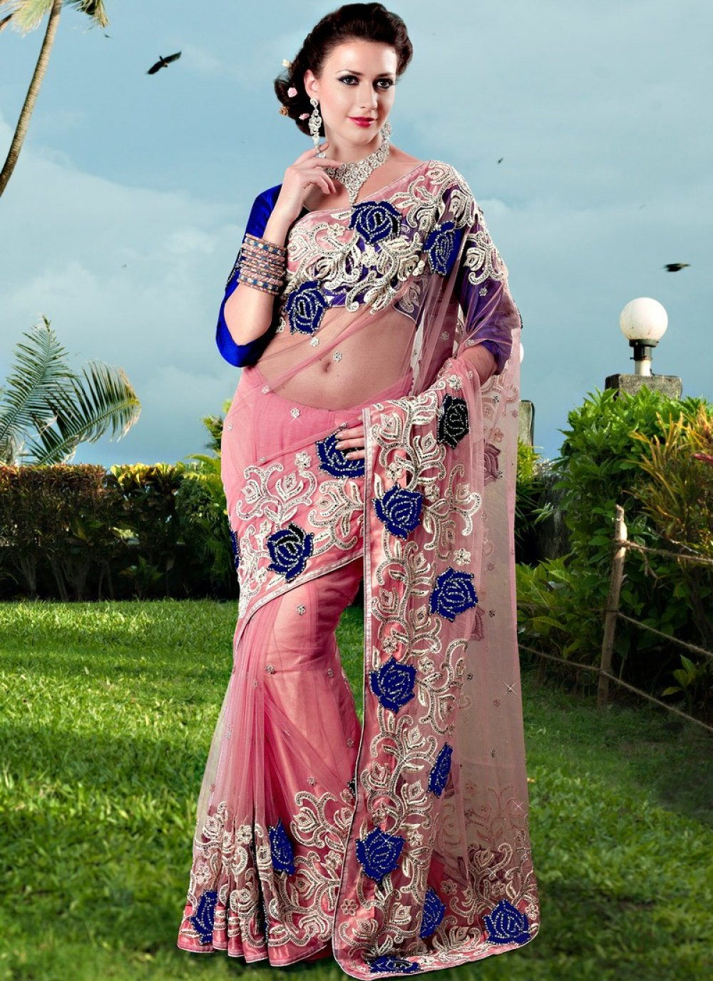 Peach Appliques And Embroidered Net Saree