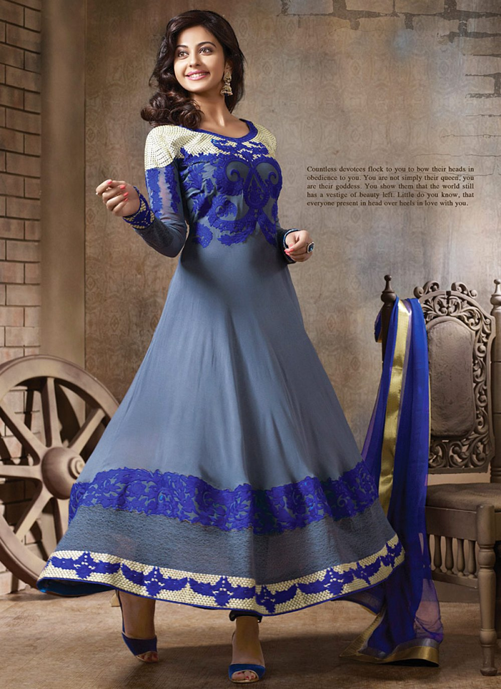 Fabulose Grey And Blue Resham Border Work Anarkali Suit