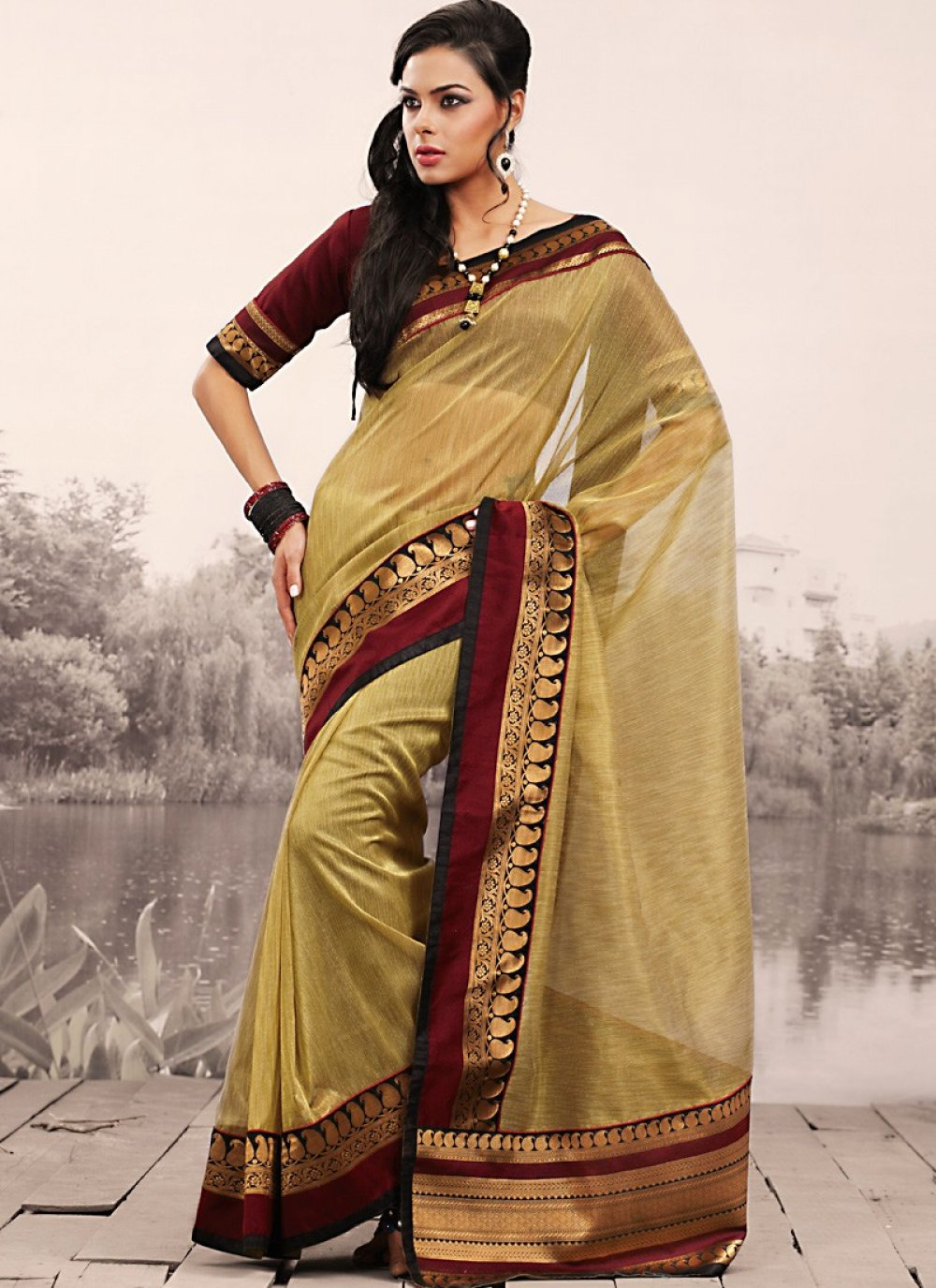 Bige Brown Embroidered Saree