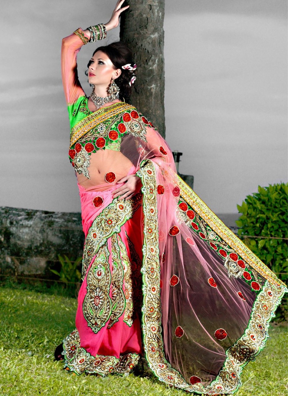 Hot Pink Net Georgette Embroidered Saree