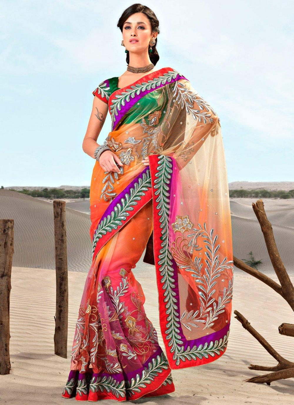 Multicolored Net Embroidered Saree