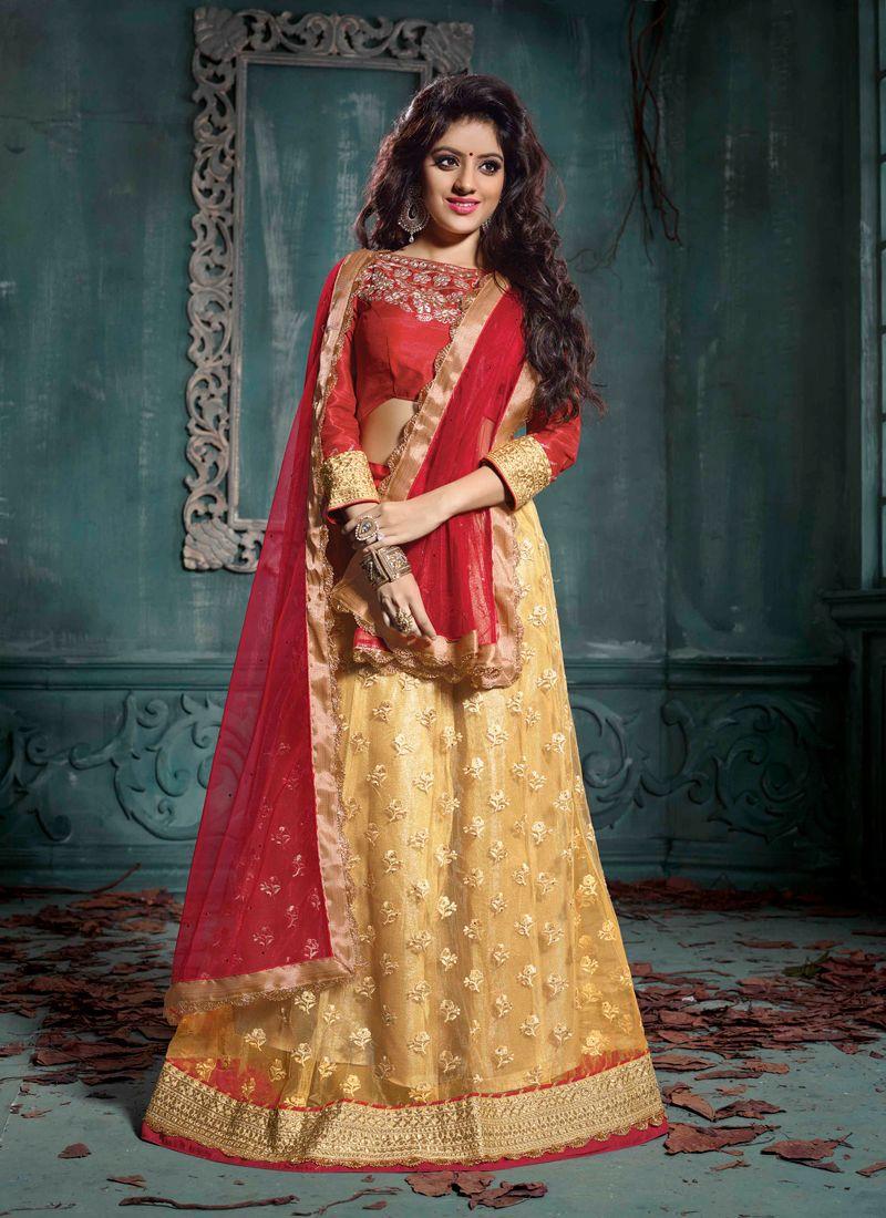 Deepika Singh Red And Gold Net Lehenga Choli