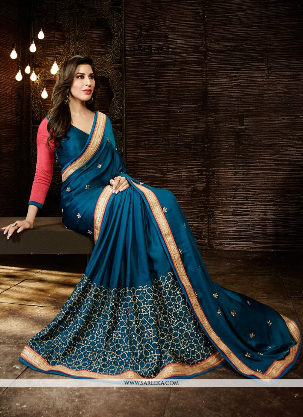Sophie Chaudhary Embroidered Work Designer Saree