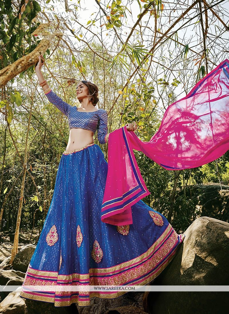 Net Blue Patch Border Work A Line Lehenga Choli