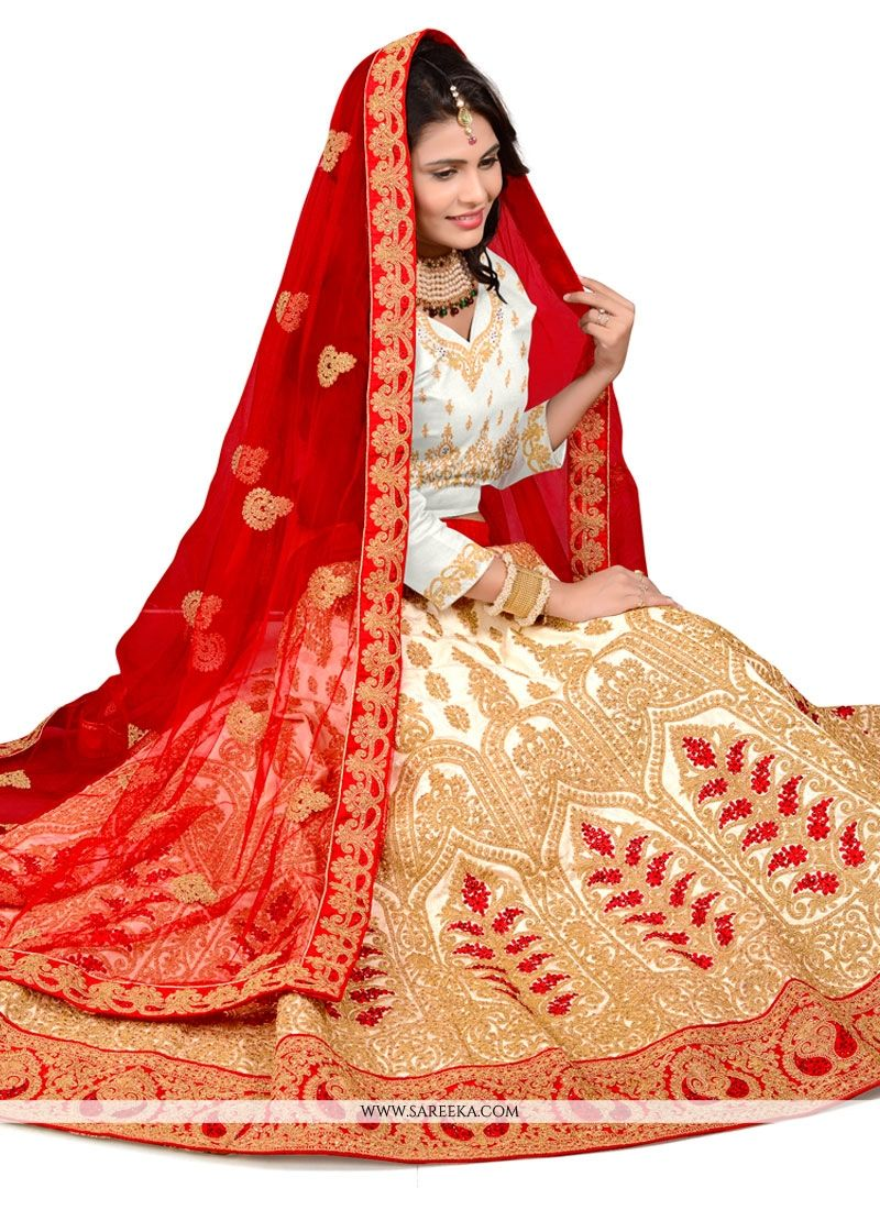 Net Beige and Red Patch Border Work A Line Lehenga Choli