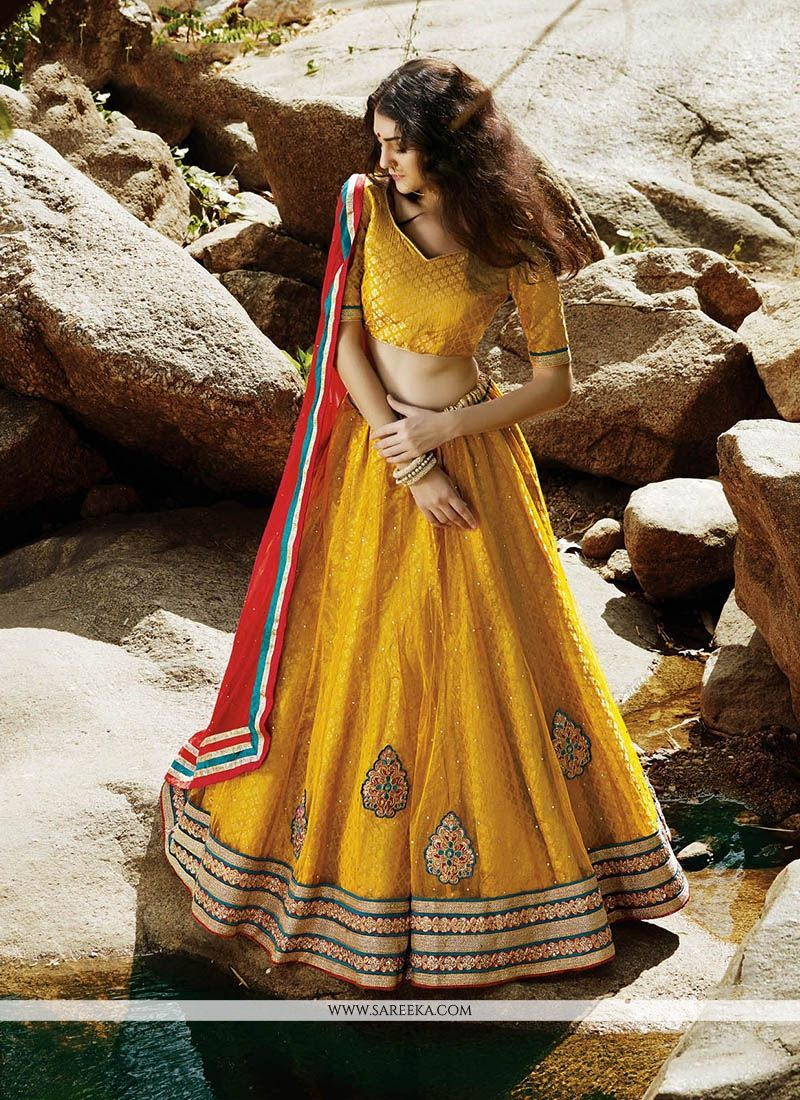 Net Embroidered Work A Line Lehenga Choli