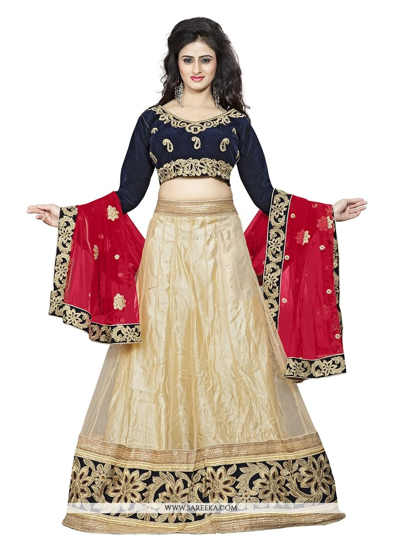 Beige Patch Border Work Net A Line Lehenga Choli