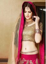 Silk Resham Work A Line Lehenga Choli