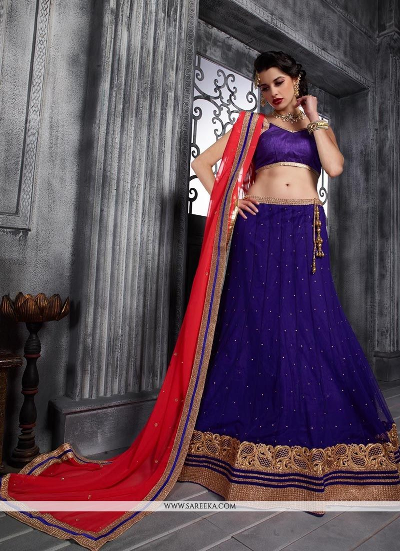 Net Patch Border Work A Line Lehenga Choli