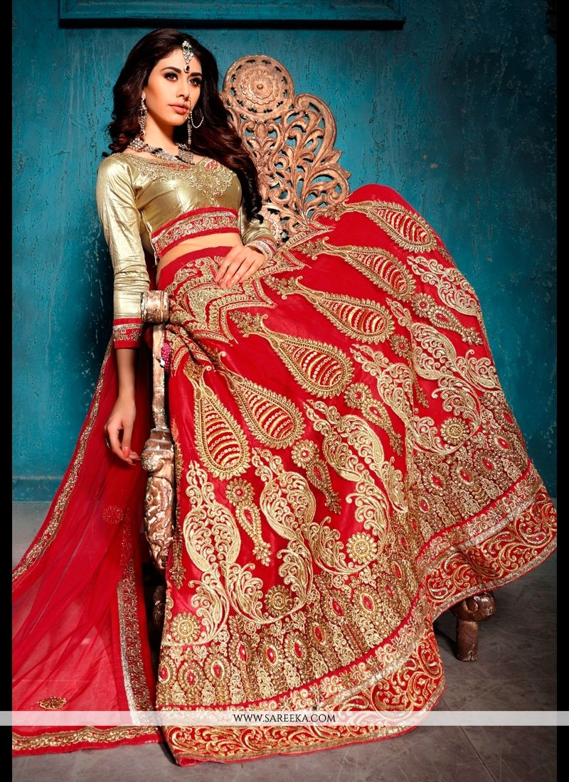 Patch Border Work Red Net A Line Lehenga Choli