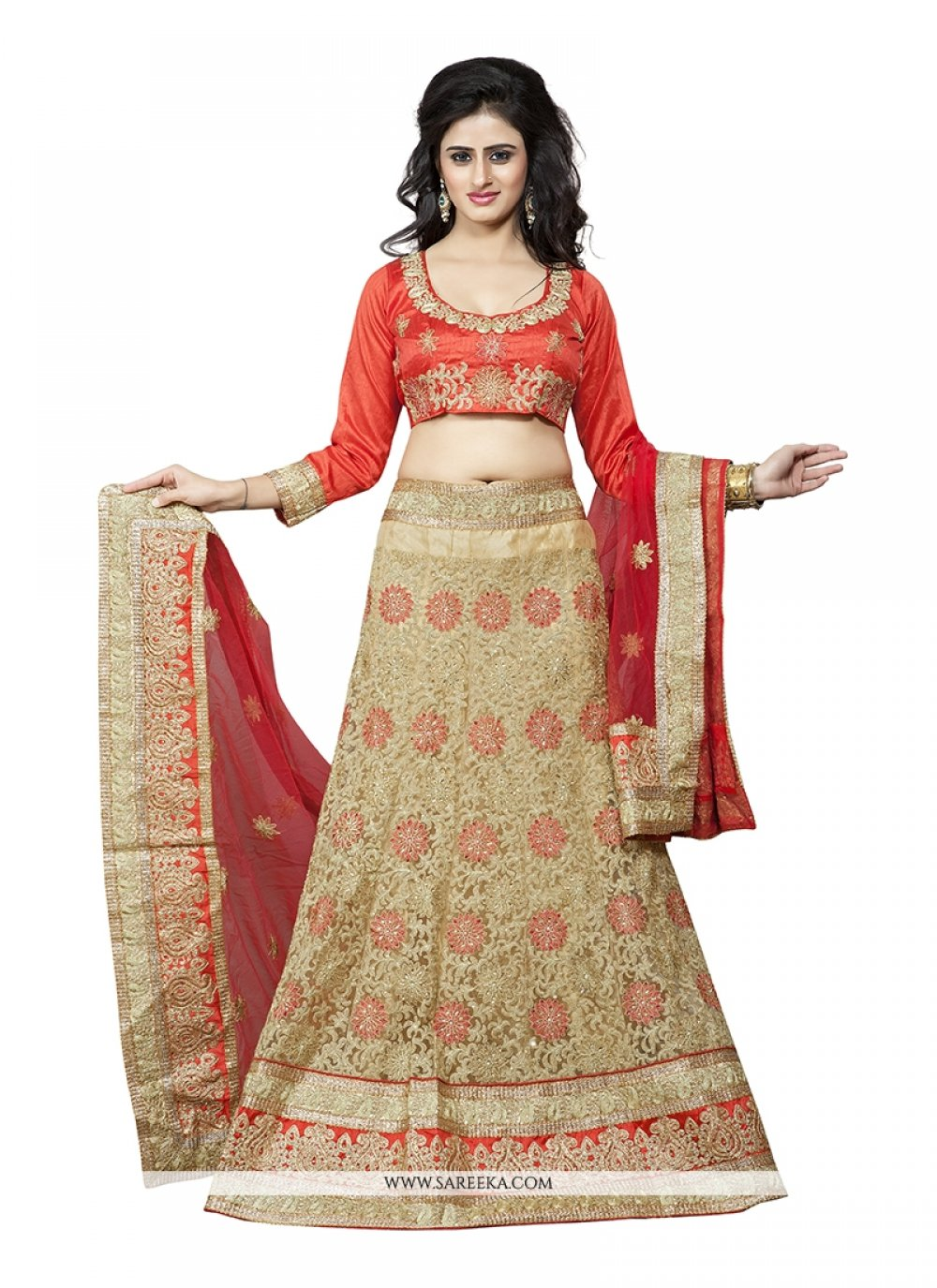 Beige Embroidered Work Net A Line Lehenga Choli