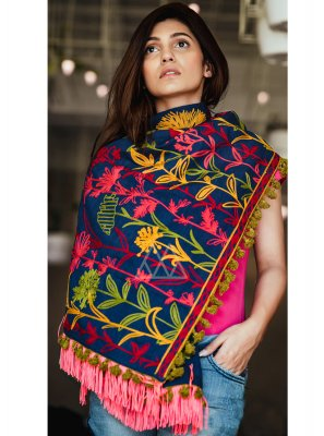 Blue Embroidered Casual Stole