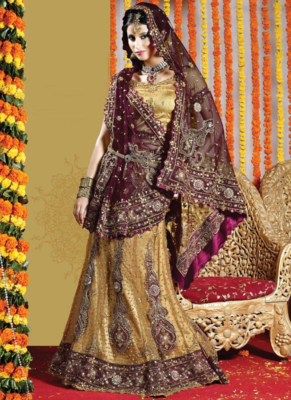 Fancy Gold Net Lehenga Choli