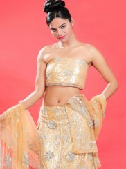 Fancy Net Lehenga Choli in Orange