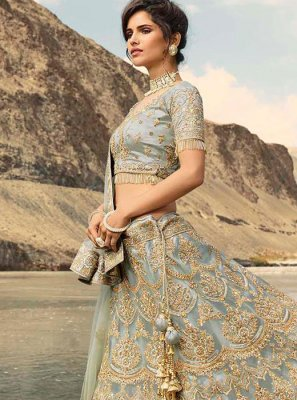 Grey Embroidered Net Trendy Designer Lehenga Choli