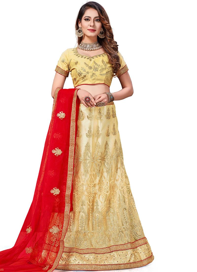Stone Work Gold Net Trendy Lehenga Choli