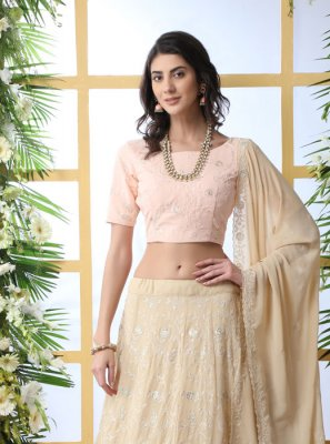 Beige Party A Line Lehenga Choli