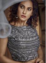 Fancy Fabric Designer Lehenga Choli in Grey