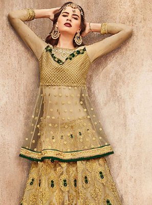 Net Embroidered Gold Trendy Lehenga Choli