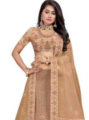 Beige Velvet Patch Border Lehenga Choli