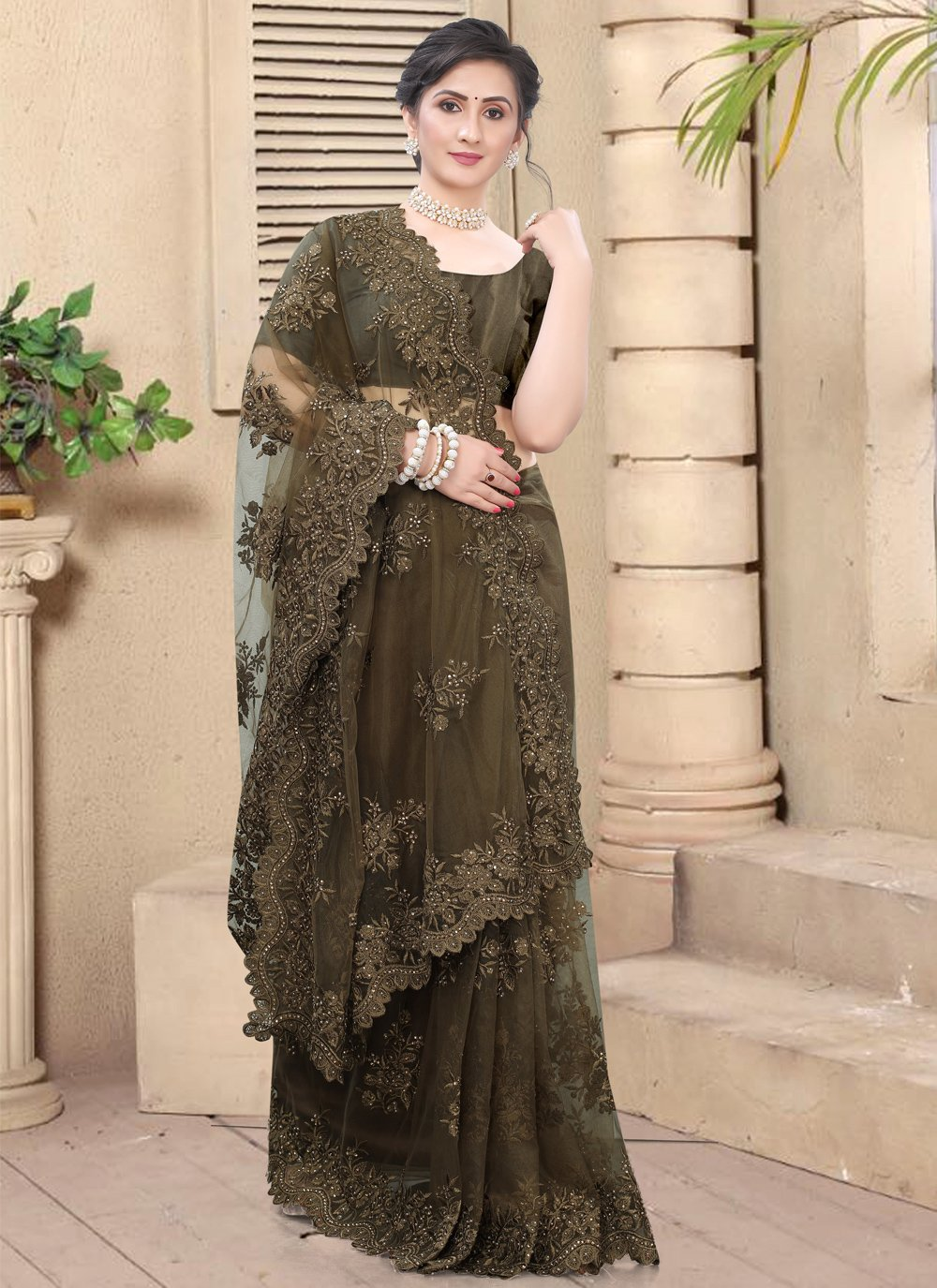 Brown Resham Net Traditional Saree