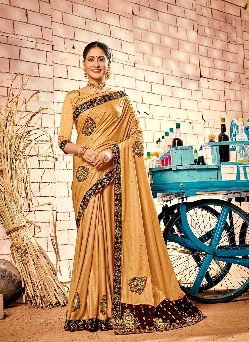 Classic Saree Patch Border Fancy Fabric in Brown