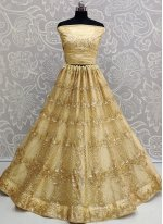 Gold Net Patch Border Lehenga Choli