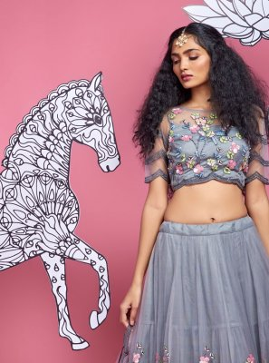 Grey Net Fancy A Line Lehenga Choli